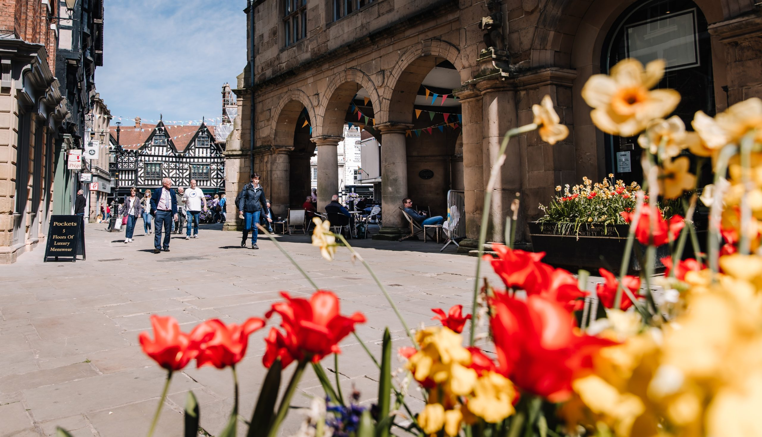 Read more about the article Shrewsbury Flower Show window competition will be blooming great